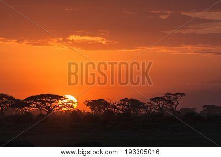 Landscapes of Amboseli. African sunrise. Kenya, Eastest Africa