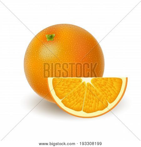 Isolated colored group of oranges slice and whole juicy fruit with shadow on white background. Realistic citrus