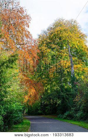 Autumn season in a beautiful park on a sunny day