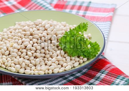 plate of raw white beans on checkered dishtowel - close up