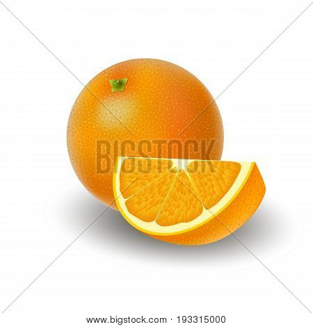 Isolated colored group of orange slice and whole juicy fruit with shadow on white background. Realistic citrus