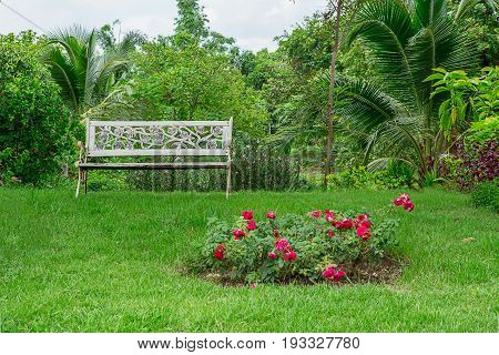 White wood bench chair with bush Background in garden at home.