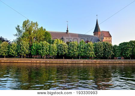 Konigsberg Cathedral on Kneiphof island. Gothic 14th century. Symbol of the city of Kaliningrad, Koenigsberg before 1946, Russia