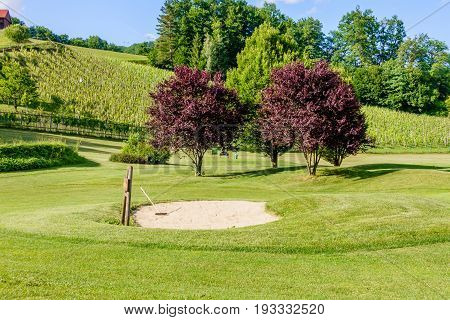 Golf course in the vineyards with bunker in front, golf course amon in Olimje, Slovenia
