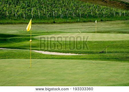 Golf course in vineyards with two greens and yellow flag posts and bunker in between, amon in olimje, Slovenia