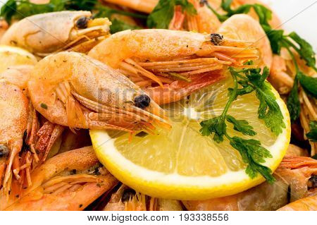 Shrimps with lemon slice . Prawns with lemon slice isolated on a white background. Seafood