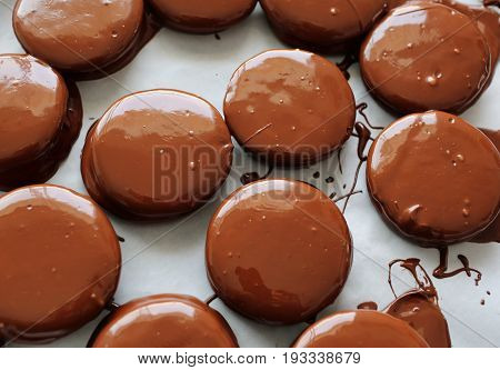 Cooking delicious brown chocolate alfajores. White background.