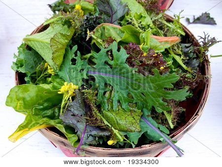 Basket Of Loose Salad Leves