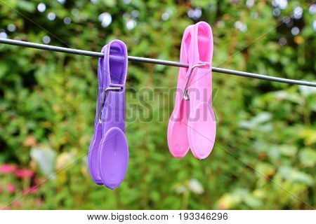Two pink and purple clothes pin on a washing line