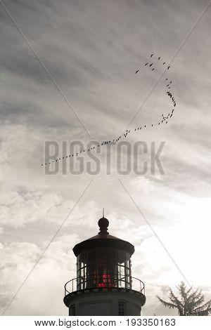 A flock of Geese fly overhead near an Oregon Lighthouse