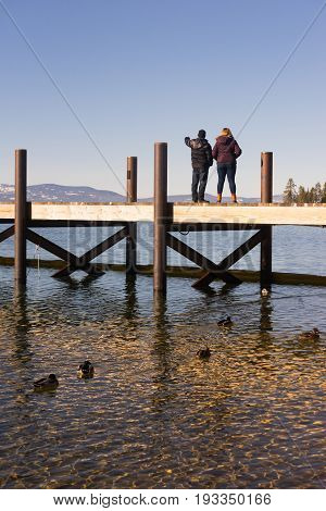 Ducks and People enjoy Lake Tahoe on a winter day