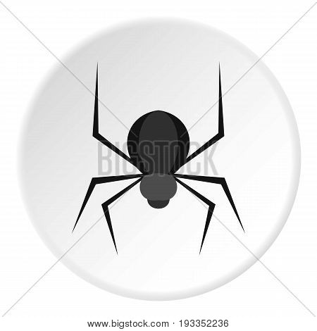 Black spider icon in flat circle isolated on white background vector illustration for web