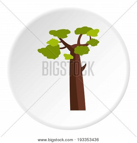 Baobab icon in flat circle isolated on white vector illustration for web