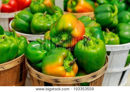 Fresh Yellow, Orange, Green And Red Organic Bell Peppers Capsicum On Display For Sale At Local Farme