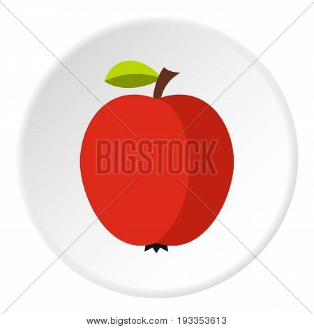 Apple icon in flat circle isolated on white vector illustration for web