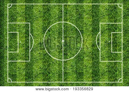 Soccer field or football field. Top view