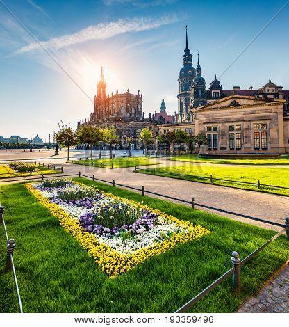 Spring Scene In Historical Scene Of Dresden