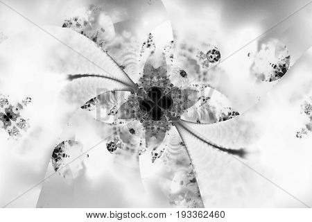 Abstract Exotic Crystal Flower. Fantasy Fractal Design In Black And White Colors. Digital Art. 3D Re