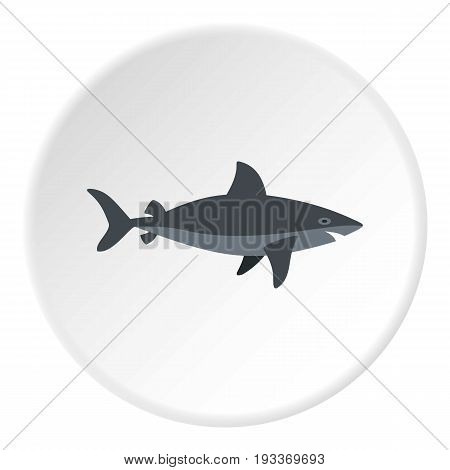 Grey shark fish icon in flat circle isolated on white background vector illustration for web