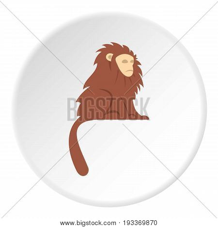 Monkey with long brown hair icon in flat circle isolated on white background vector illustration for web