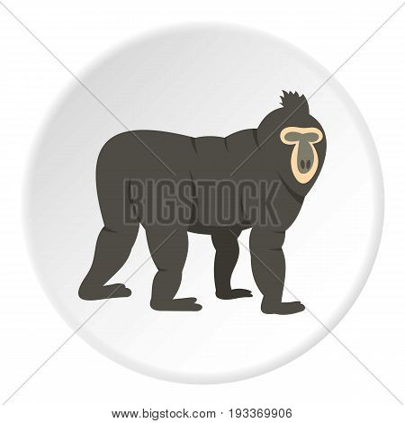Mandrill icon in flat circle isolated on white background vector illustration for web