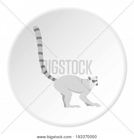 Lemur icon in flat circle isolated on white background vector illustration for web