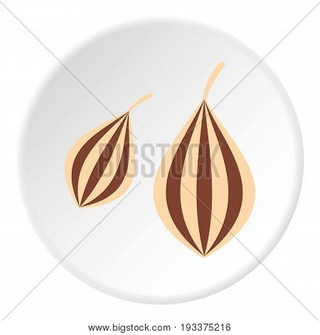 Ajwain icon in flat circle isolated on white background vector illustration for web