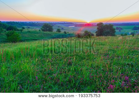 Summer landscape of the hilly area with separate trees wild flowers and vodoyoy. All this is penetrated by bright beams of a rising sun which has partially ascended on the horizon. Krasnodar Krai.