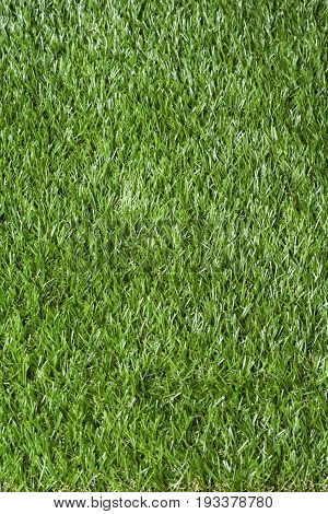Synthetic Grass Vertically