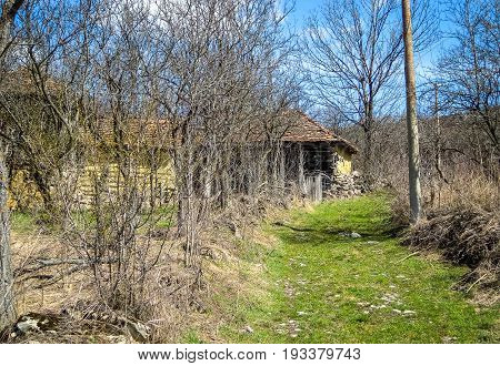 Path to old abandoned house in abandoned Serbian village.  Beautiful nature