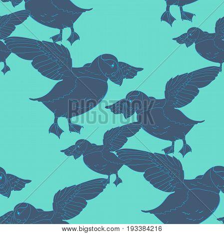 Seamless Pattern Bird Deadlock Australian Atlantic In Flight. Vector Illustration