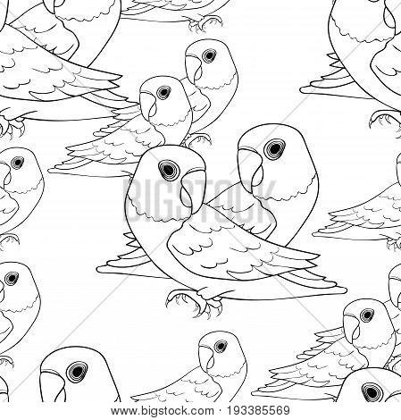 Seamless Pattern Masked Lovebird Coloring Parrot Vector Illustration