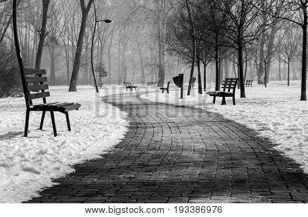 Brick path in the misty park covered with snow. Winter image. Hard contrast. Dark image. Black and white