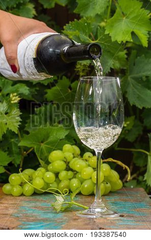Waiter Pouring A Glass Of Ice Cold White Wine, Outdoor Terrace, Wine Tasting In Sunny Day, Green Vin