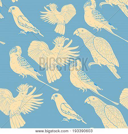 Seamless Pattern Jaco, Lovebird, Wavy Parrot Kakadu. Vector Illustration