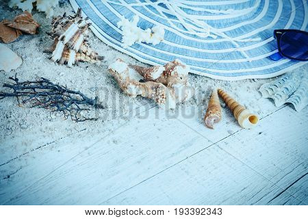 Sand and shells and hat on the wooden floor of the blue summer concept travel Seychely beach Florida Hawai swimm in Bali summer pradise
