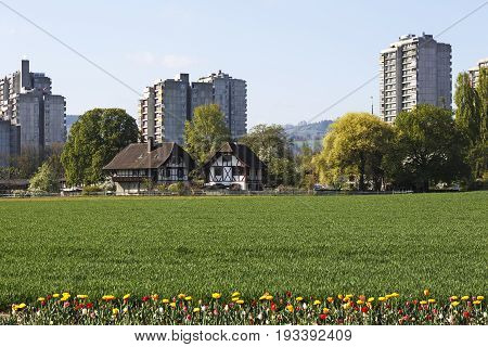 Bern Switzerland - April 14 2017: The diversity of architecture in the Murifeld district. Traditional half-timbered houses in contrast to concrete multi-family houses surrounded by trees and fields