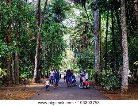 Botanic Garden In Mauritius