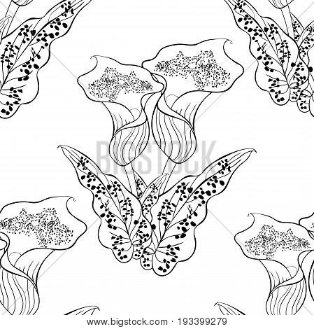 Seamless Pattern Coloring Calla Picasso Of Flower. Vector Illustration