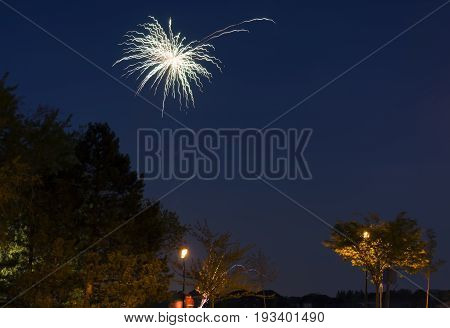 Fireworks Bursting High In The Sky Above Watchers At A Community Park