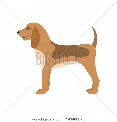 Vector illustration of a cartoon hunting dog. Isolated white background. Flat style. Puppy side view, profile.