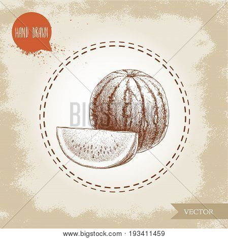 Hand drawn sketch style watermelon and watermelon slice vector illustration. Vintage fruit design isolated on grunge background.