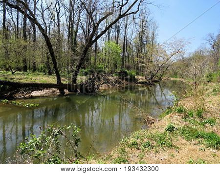 Mine Run Branch River tributary of the Potomac River near Washington DC 15 April 2016 USA