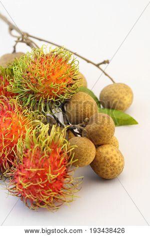 Tropical summer fruits Rambutan and Longan on white background.