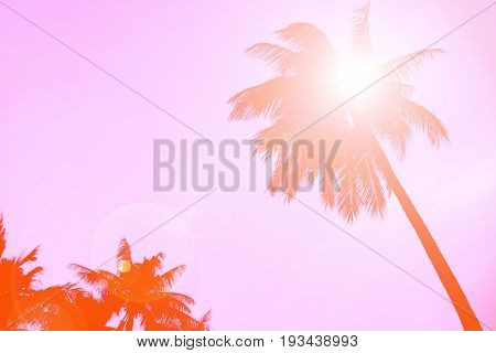 Silhouette coconut palm tree with lens flare retro orange color shade for background.
