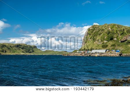 The shores between Gallanach and Oban, Scotland