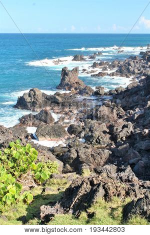 Black volcanic rocck along the beach in St. Kitts