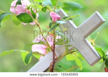 Wild roses entwined around a silver wood cross