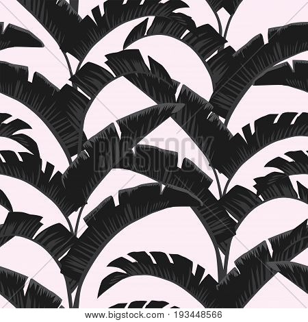 Palm leaves in dark color are herringbone. Seamless vector pattern of light rose background