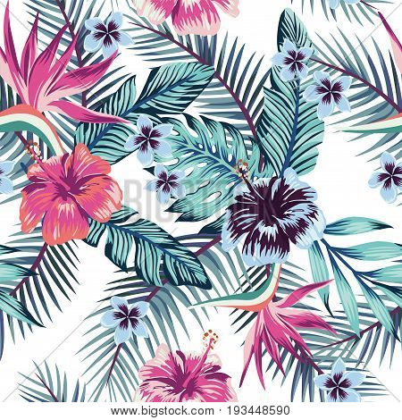 Flowers of the bird of paradise hibiscus plumeria and palm leaves in the jungle in abstract color. Seamless vector beach wallpaper pattern on white background
